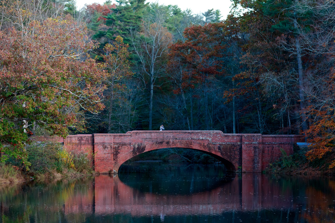 View from across the Bass Pond looking at the bridge. A great place for a Biltmore proposal