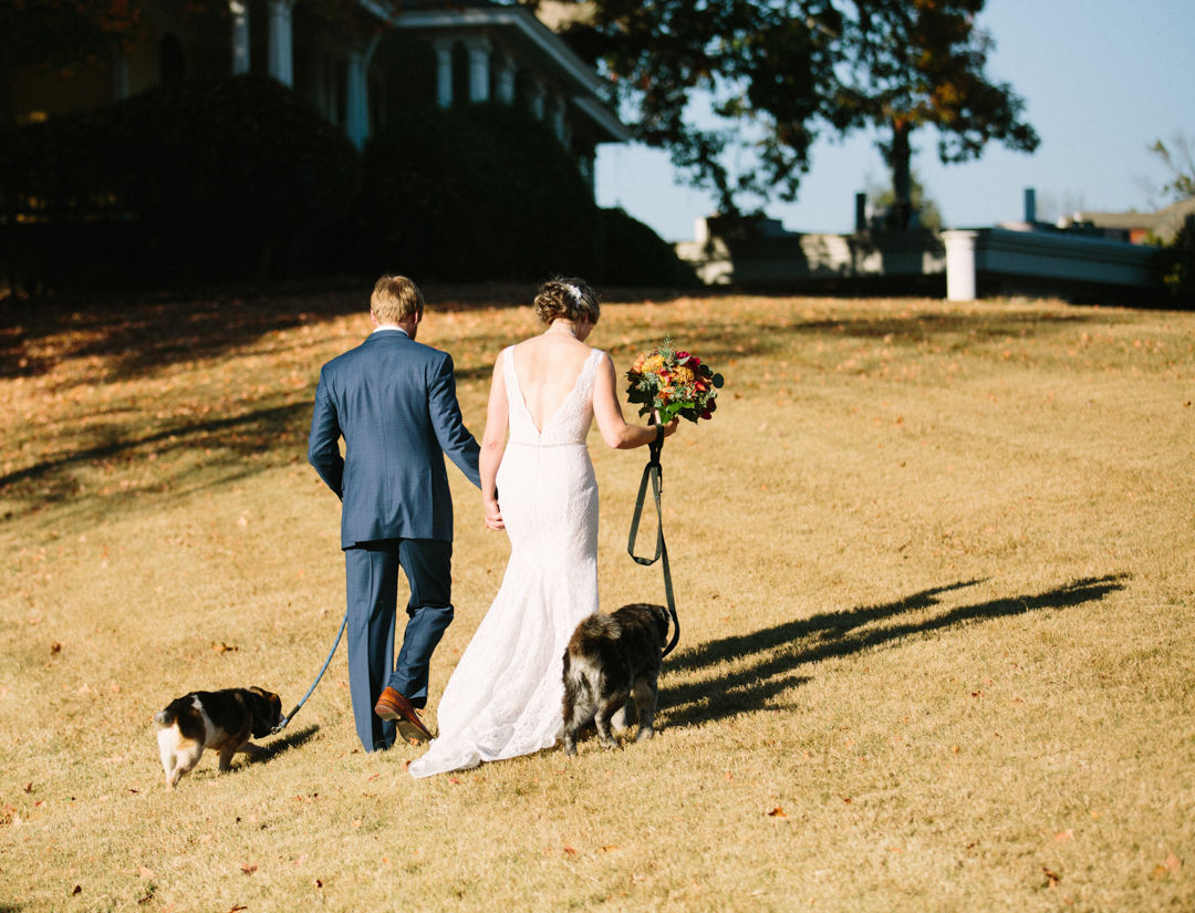 Bride and groom walk away from photographer with sun on their backs with each dog in the other hand with leash.