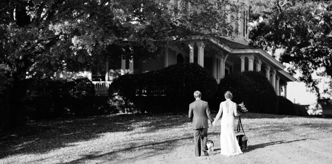 Black and white picture with bride and groom walking away across the yard with hands held and dogs in tow.