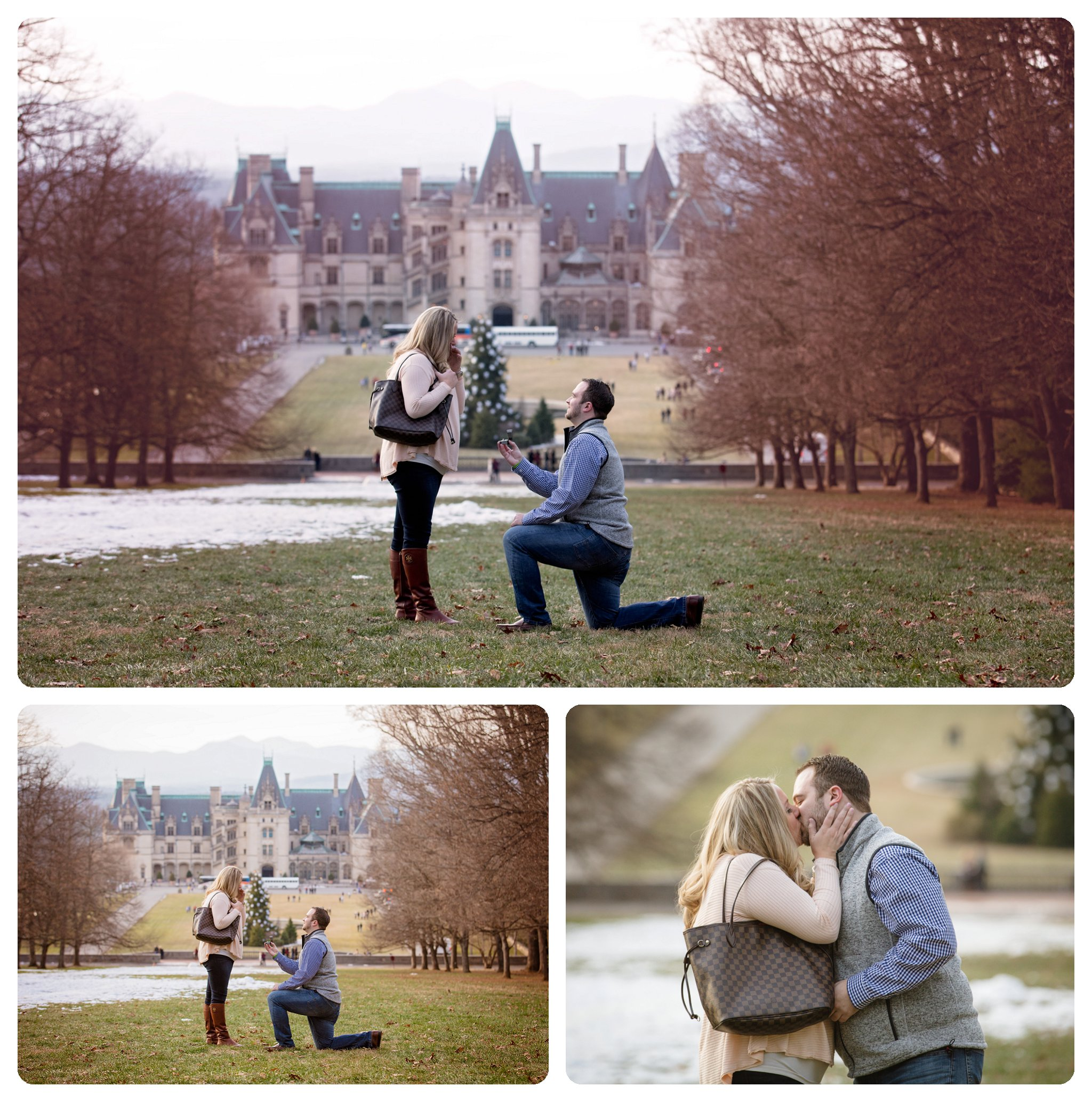 Surprise proposal at Biltmore Estate in Asheville NC on Diana Hill - 3