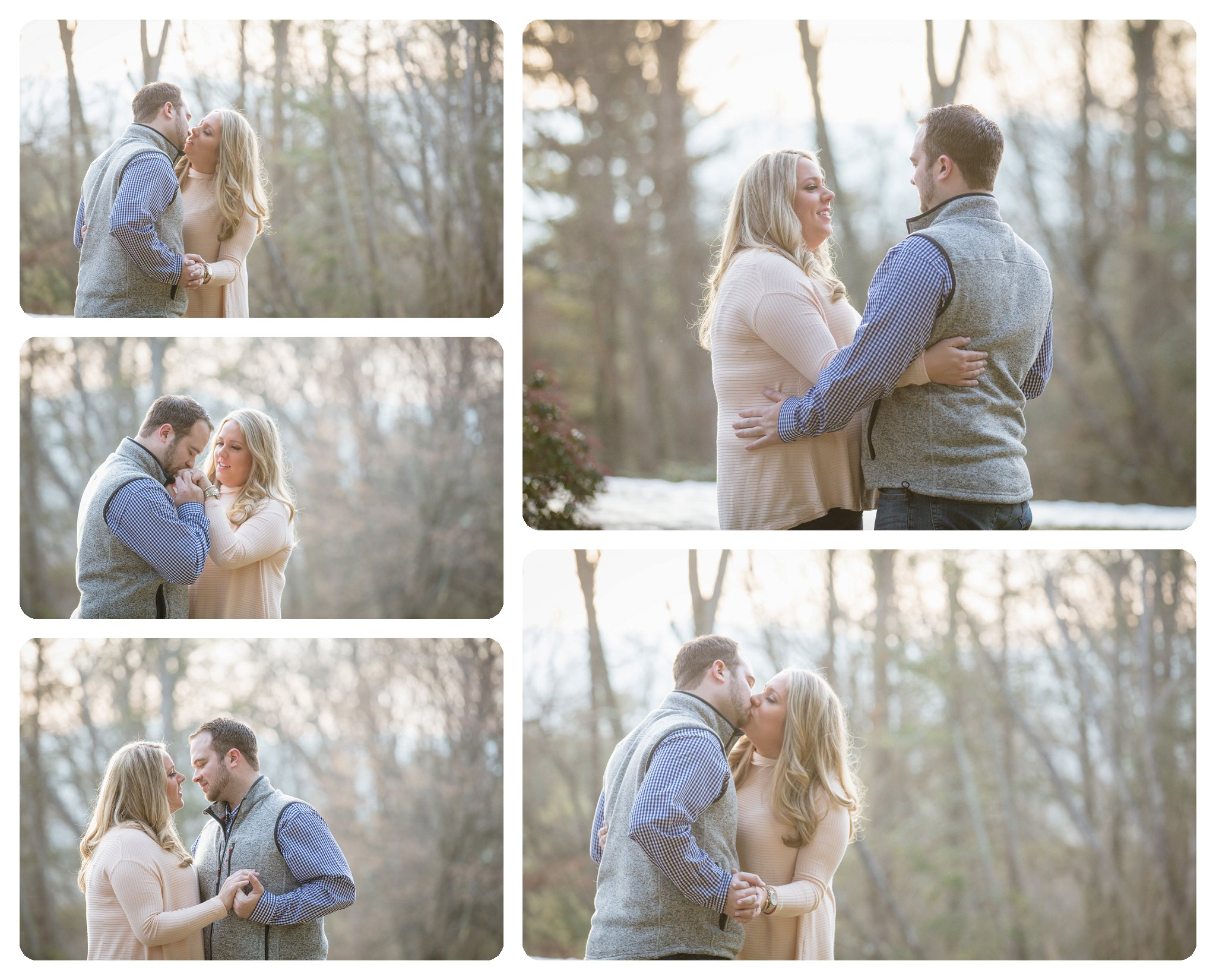 Surprise proposal at Biltmore Estate in Asheville NC on Diana Hill - 7