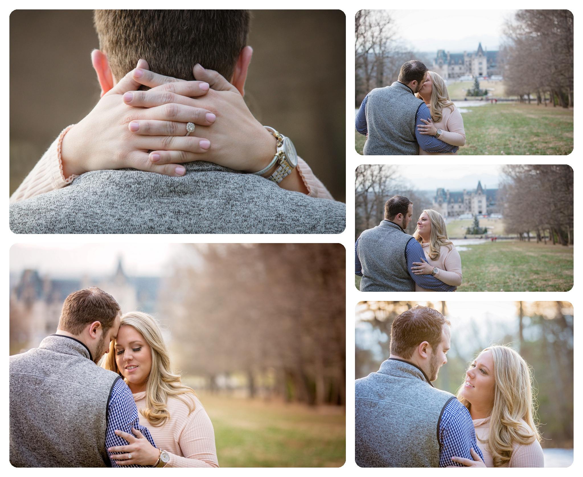 Surprise proposal at Biltmore Estate in Asheville NC on Diana Hill - 4