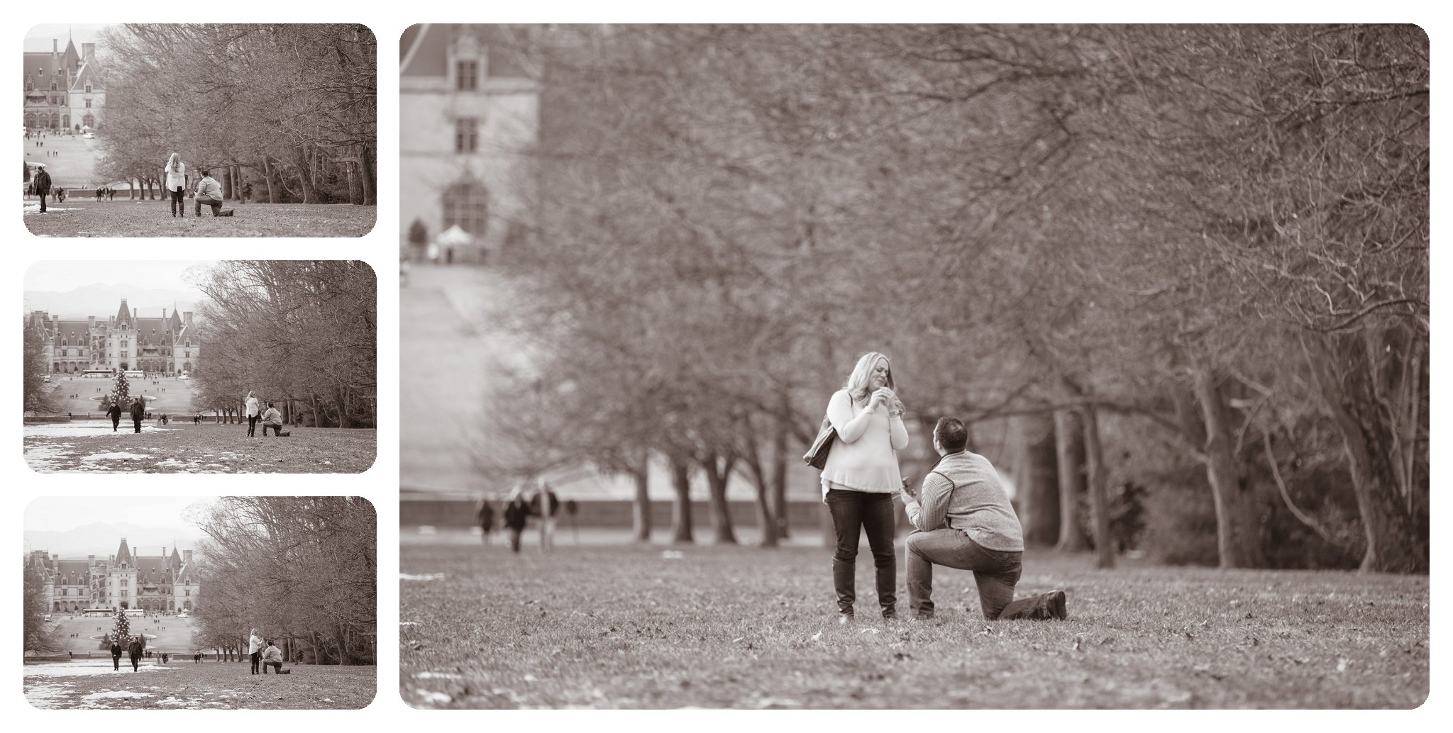 Surprise proposal at Biltmore Estate in Asheville NC on Diana Hill - 1