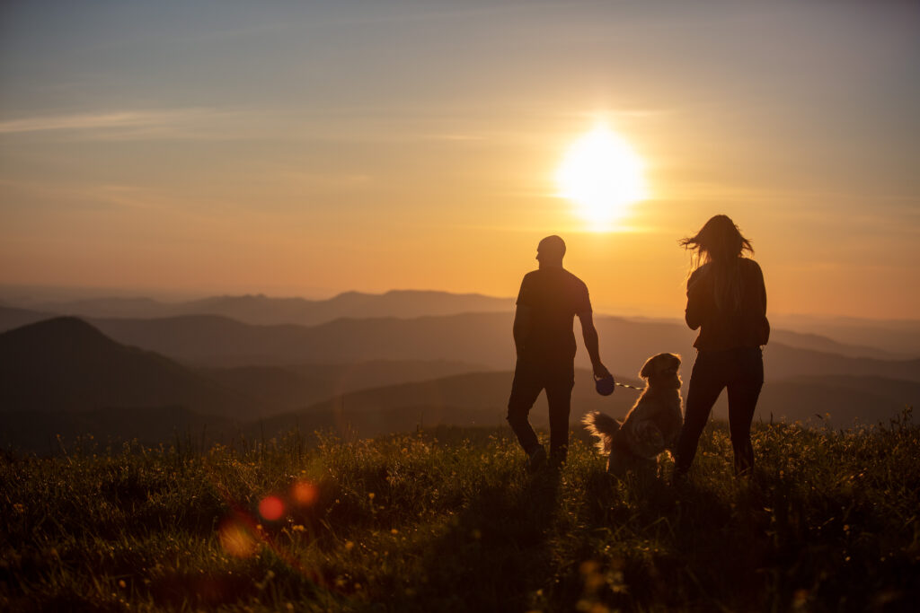 The newly engaged couple walking into the sunset with their golden retriever on top of max patch.