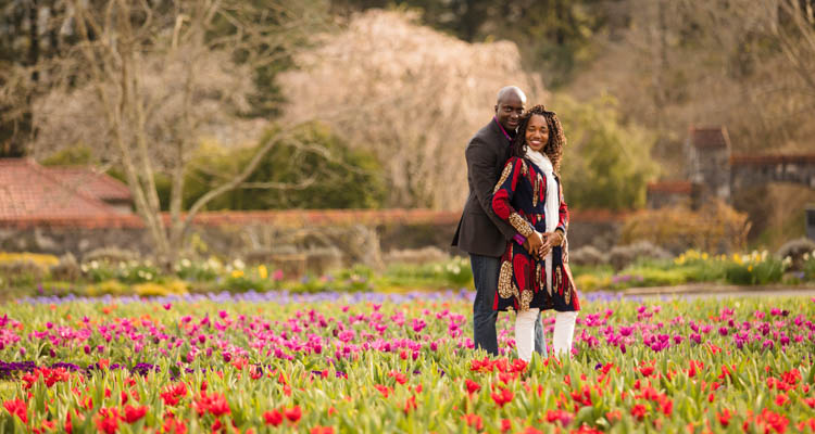 Couple holding each other closely in tulip fields in the walled gardens on the Biltmore Estate