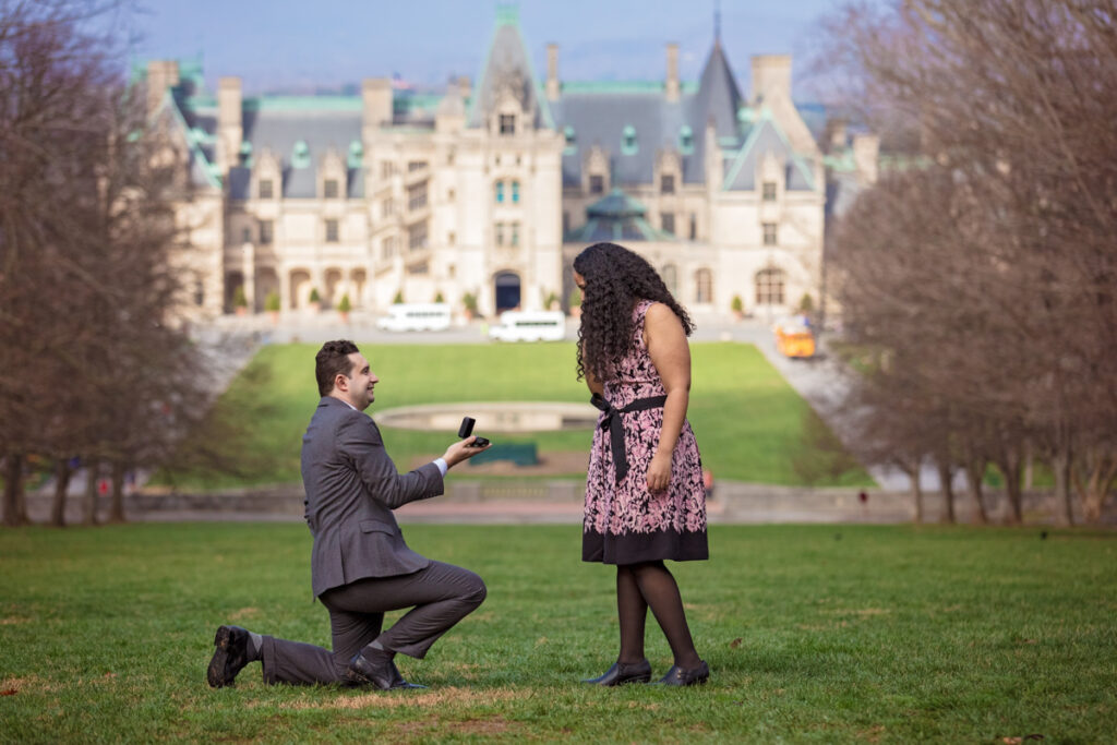Image of Biltmore Surprise Proposal